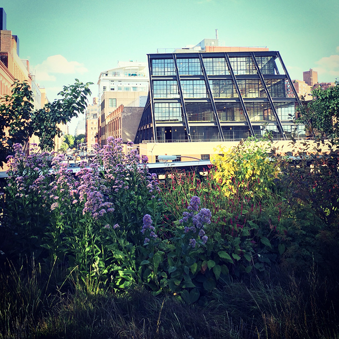 NYC1-HighlineView